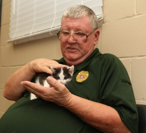 George Palone, animal control officer, pets a kitten at the Midwest City Animal Shelter. The city has seen a steady rise in the number of animal adoptions. (Staff photo by Jeff Harrison)
